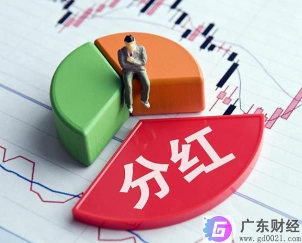 2020年广东上市公司分红近2560亿元